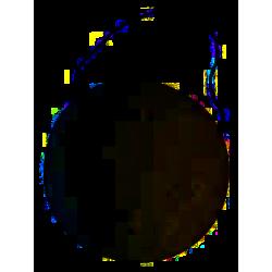 Eponge KONJAC blanche